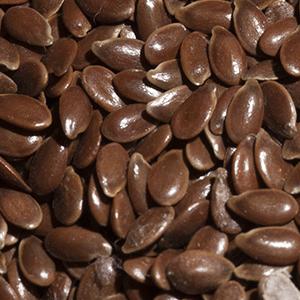 Graines-Seeds-Flaxseed-flax-saneco