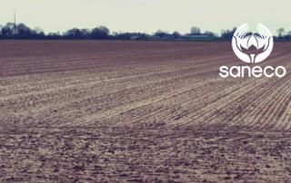 mars rapport recolte lin saneco