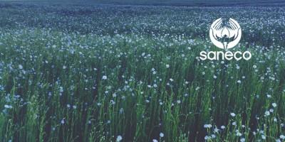 20 june flax saneco crop report