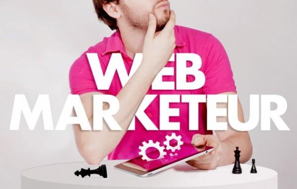 web-marketeur-saneco-sanelin
